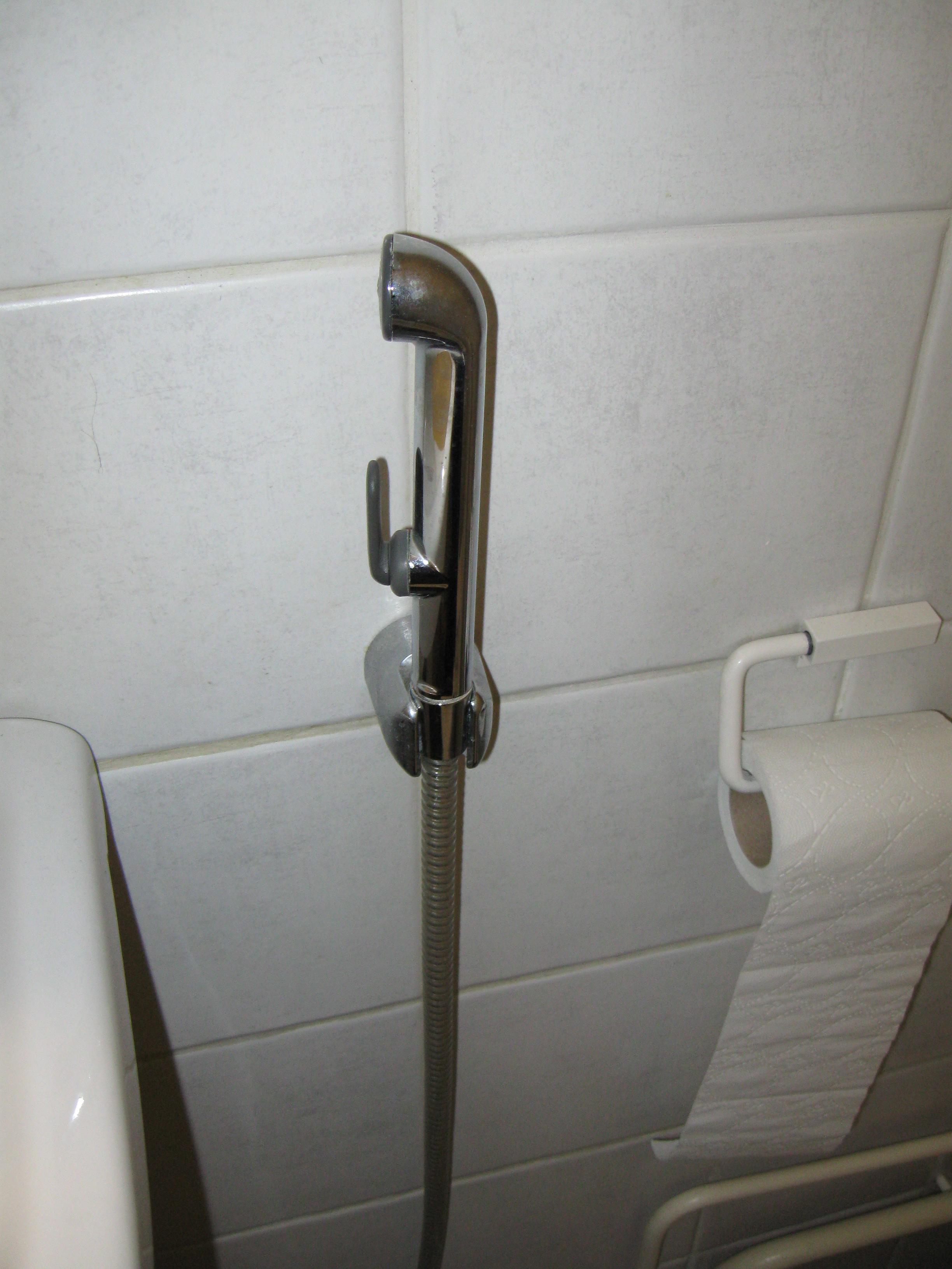 Anal hygiene - Wikiwand