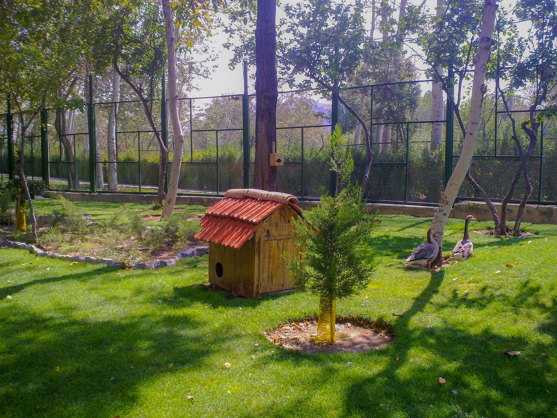 File:Birds Garden of Isfahan باغ پرندگان اصفهان 17.jpg - Wikimedia ...