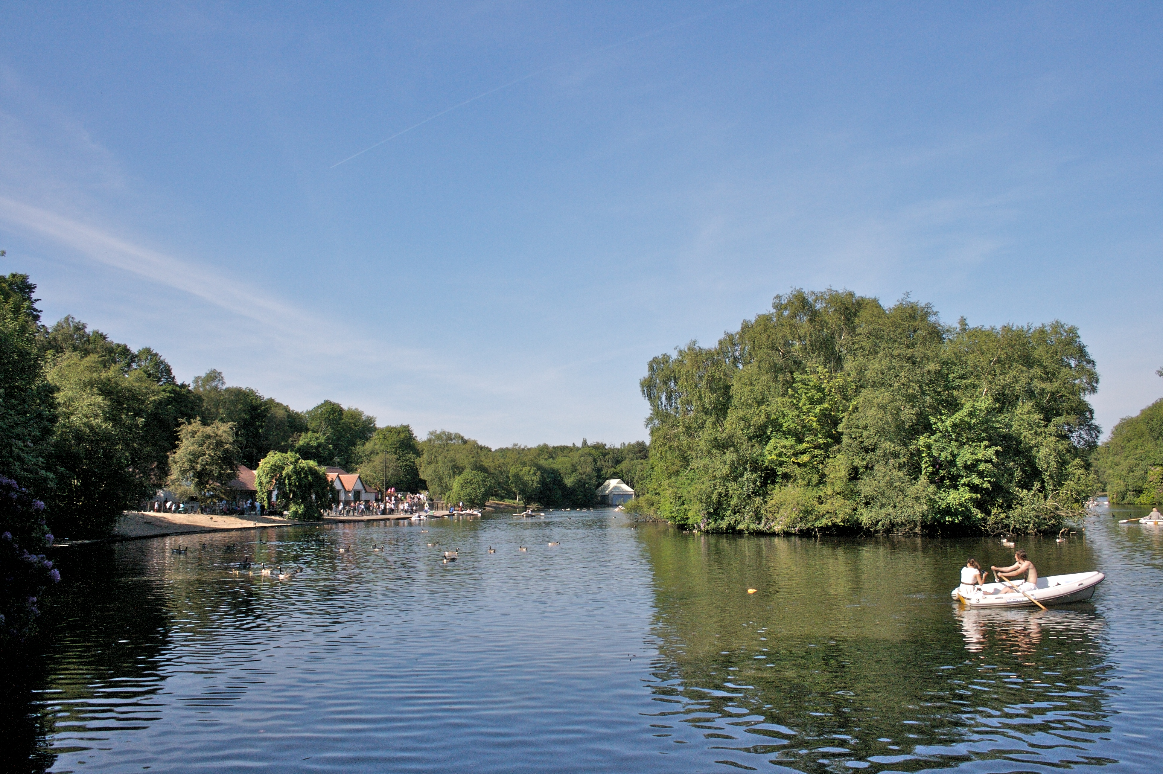 Heaton-park-lake-dog-walking-in-Prestwich