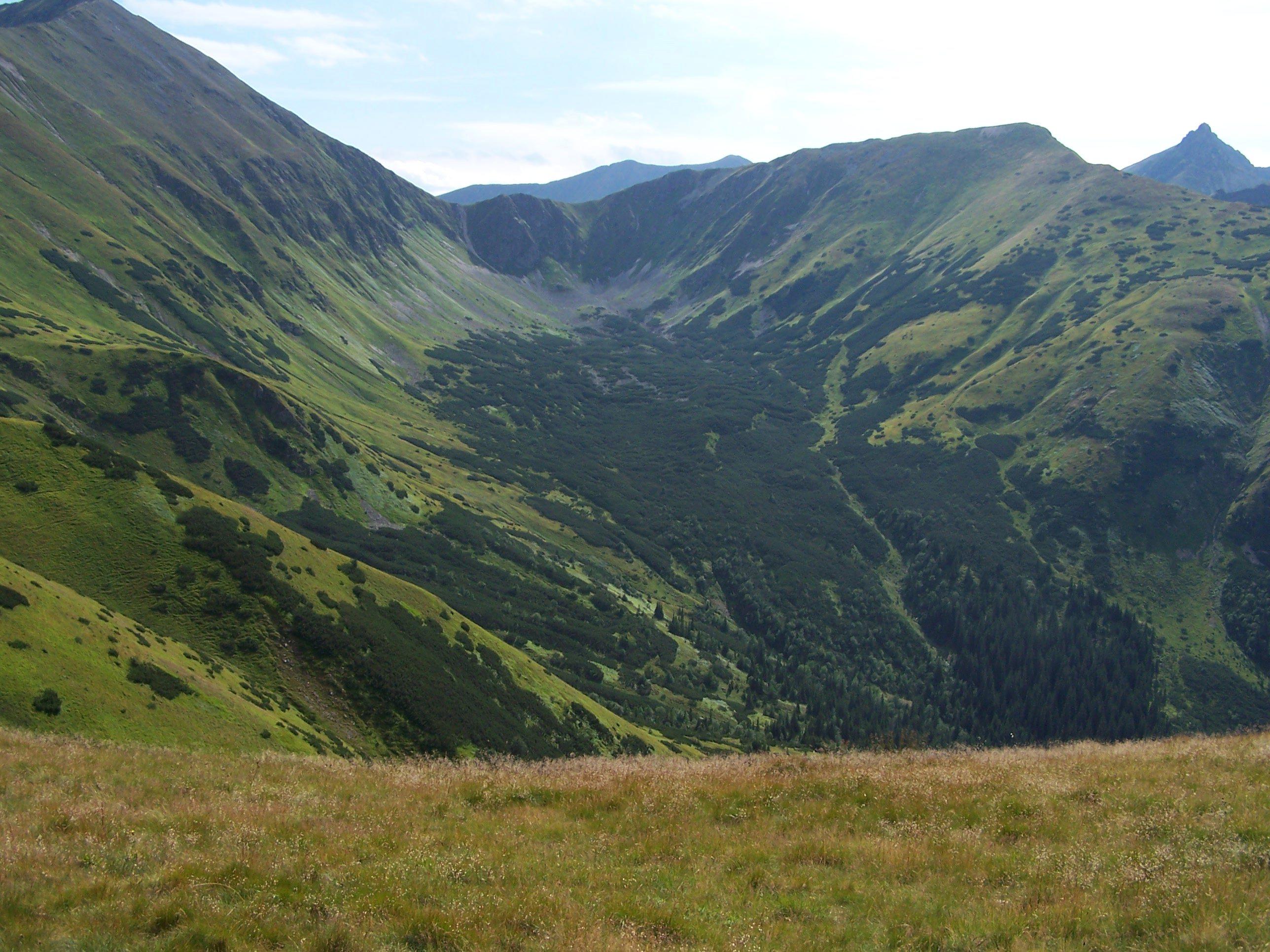 Dolina Chochołowska (źródło: Wikimedia)