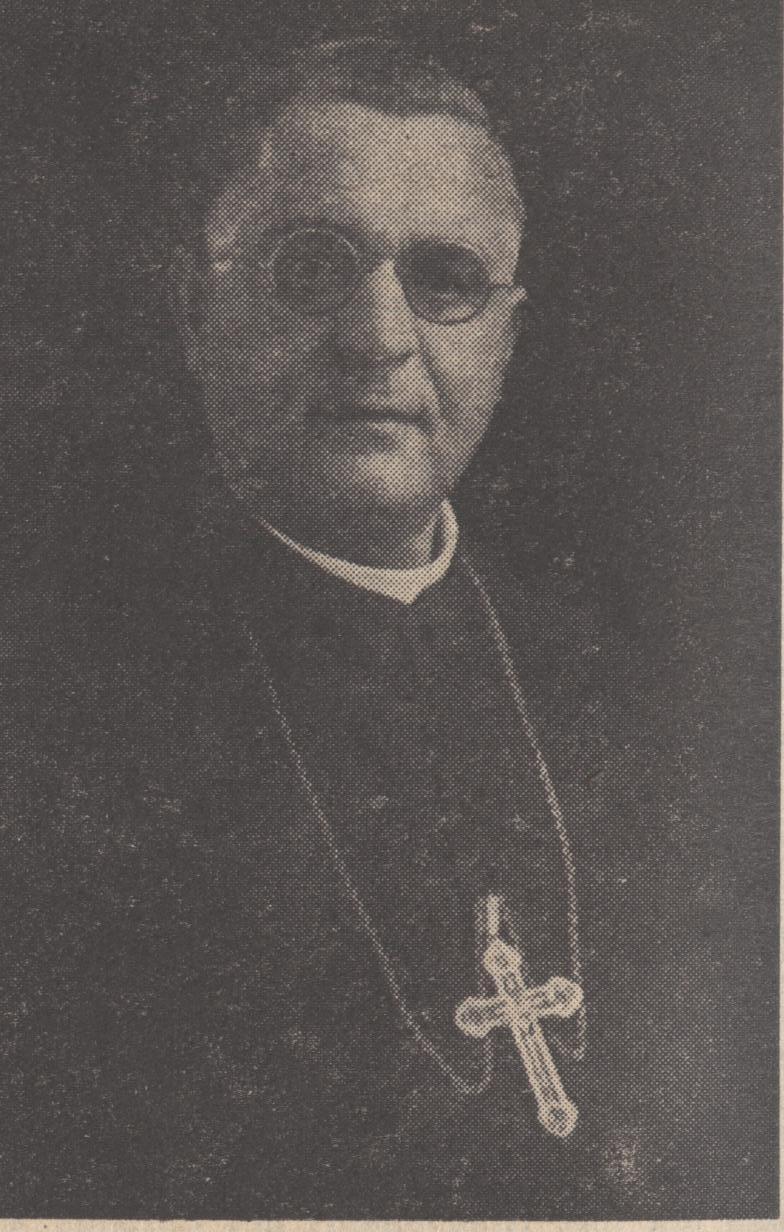 Alfred joseph koch wikipedia for Koch wikipedia