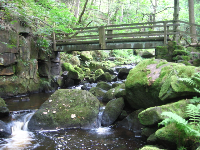Footbridge over Burbage Brook in Yarncliff Wood - geograph.org.uk - 1455306