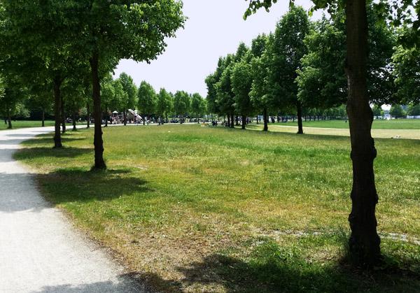 Nidda Park