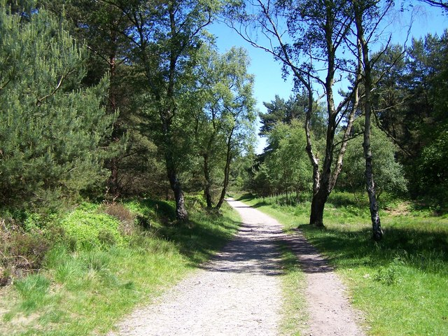 Heart Of England Way, Cannock Chase - geograph.org.uk - 838055
