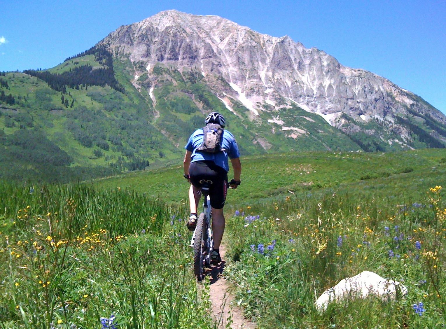 Mountain Bike Action Shoe Review