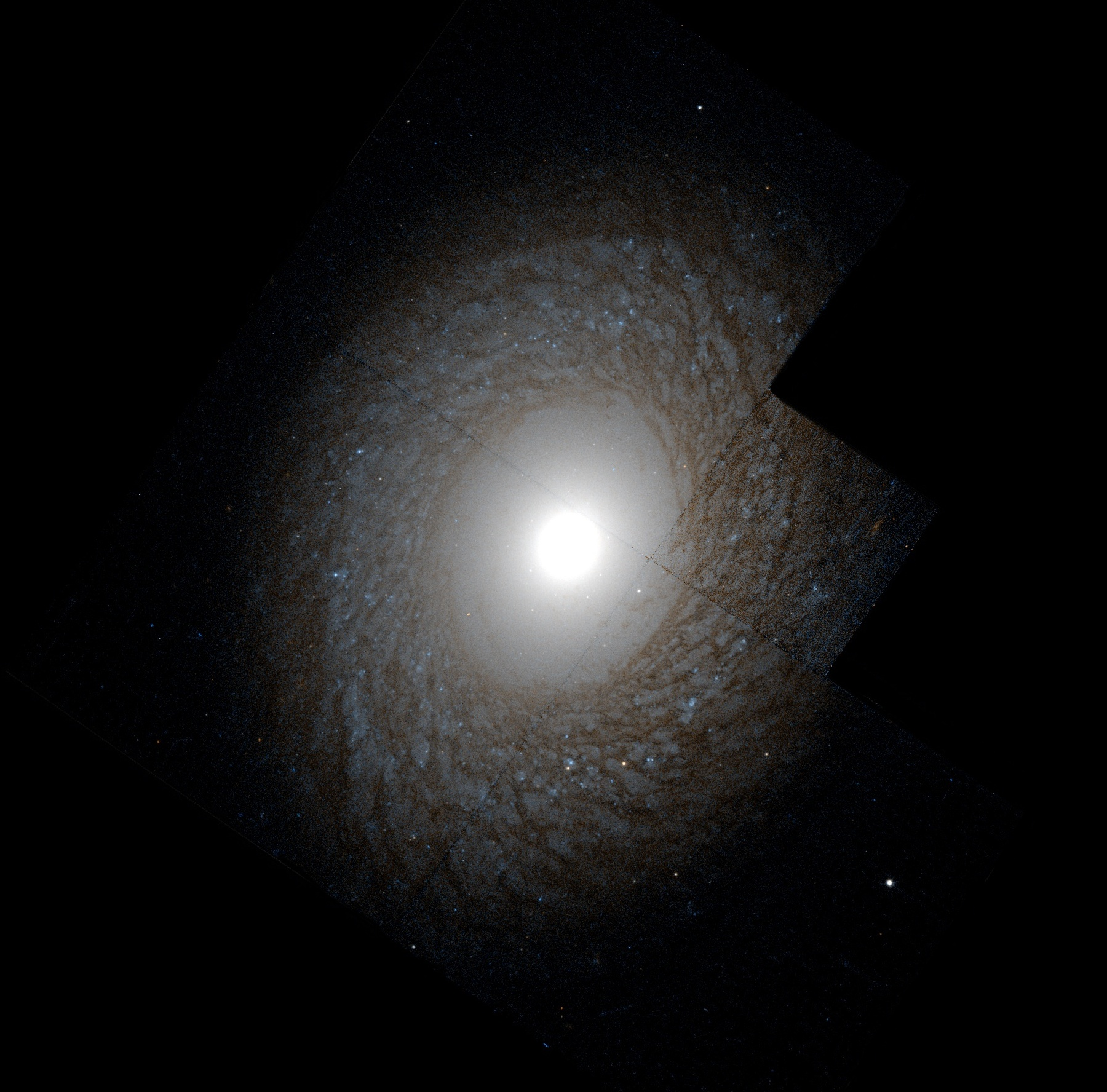 Depiction of NGC 2775