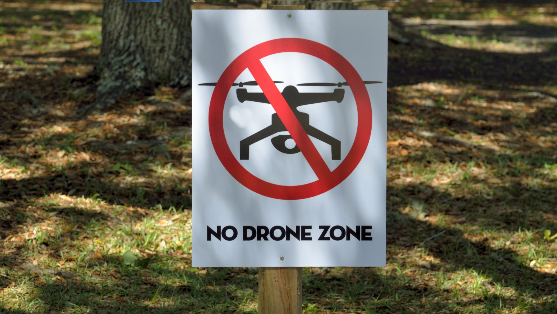 Picture of No Drone Zone