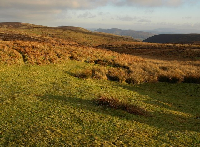 On the Long Mynd - geograph.org.uk - 1108477