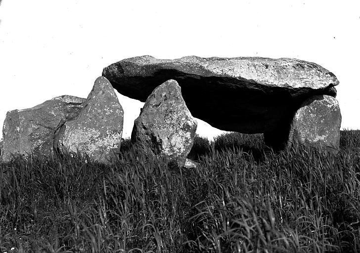 Dolmen de Kergarat à Plouharnel, photographié par Zacharie Le Rouzic.