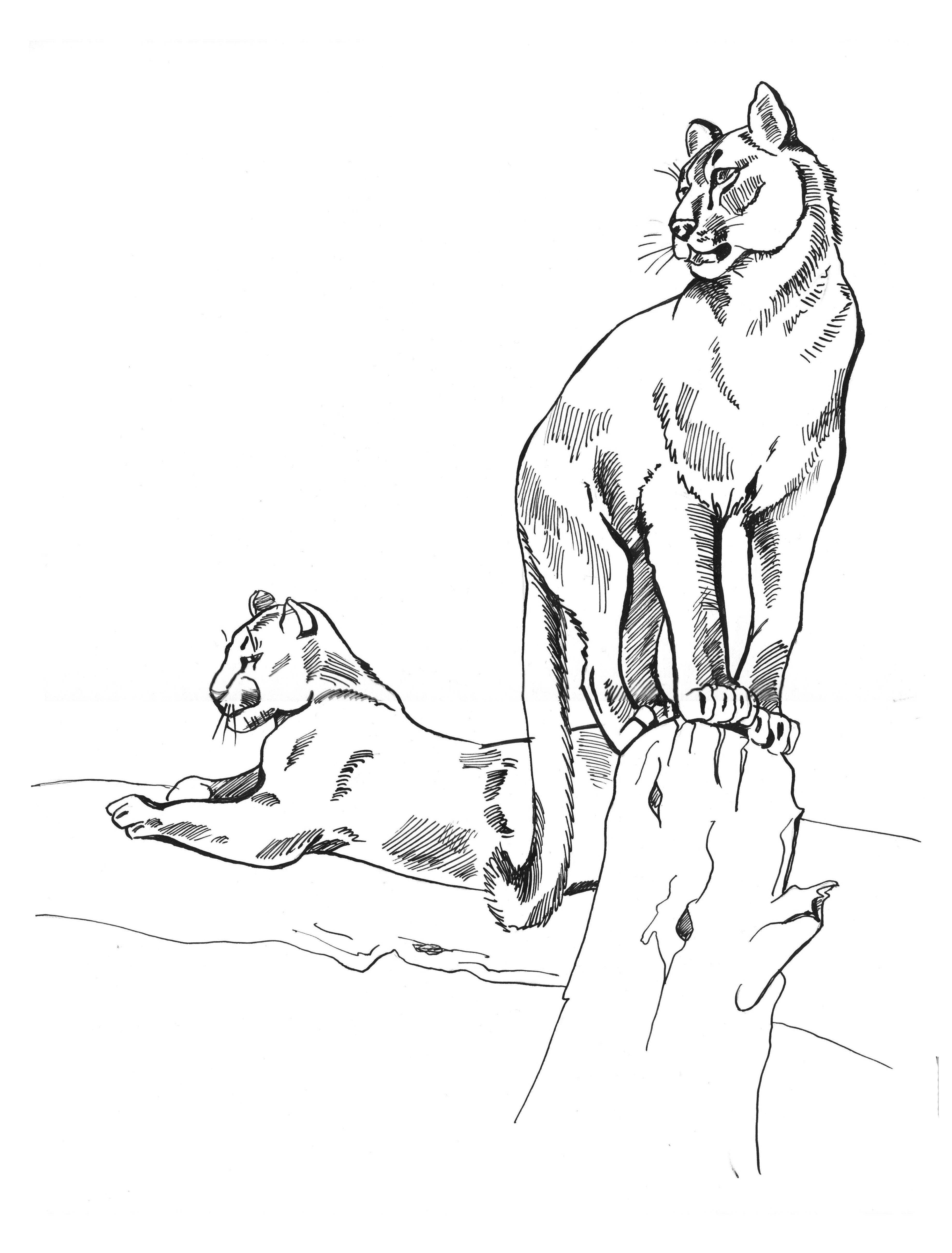 Cougar Surprend Son Fils Sous La Douche