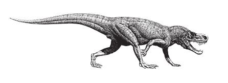 Krokodil, Rauisuchia Postosuchus