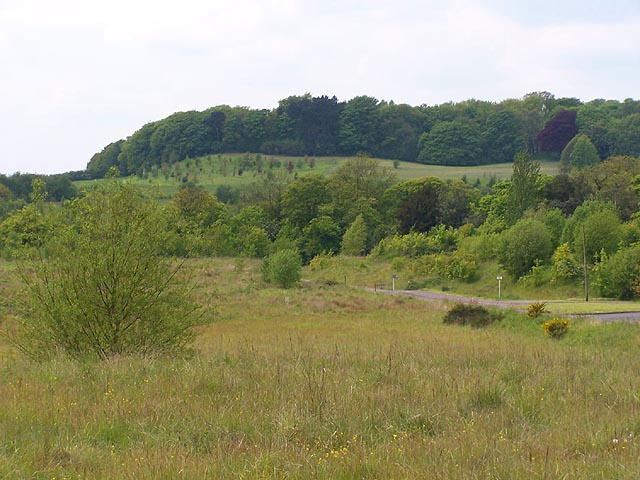 Shipley Hill - geograph.org.uk - 15880