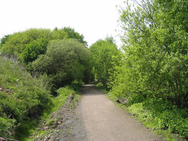 South Tyne Trail - geograph.org.uk - 178099