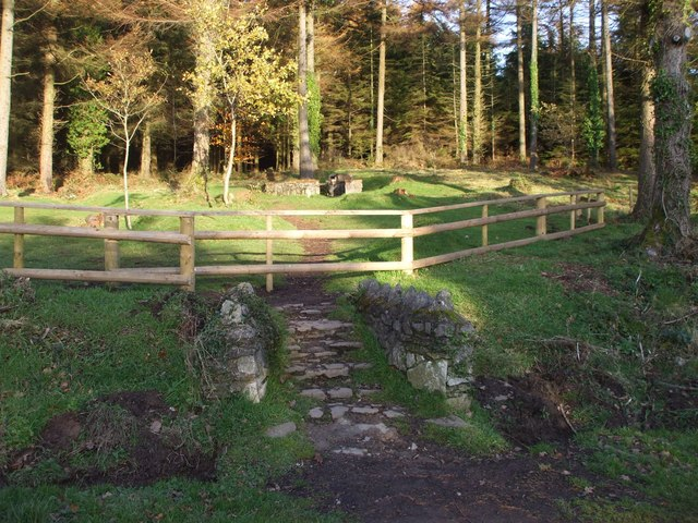 Steps from carpark to picnic area, Hensol Forest - geograph.org.uk - 1036767
