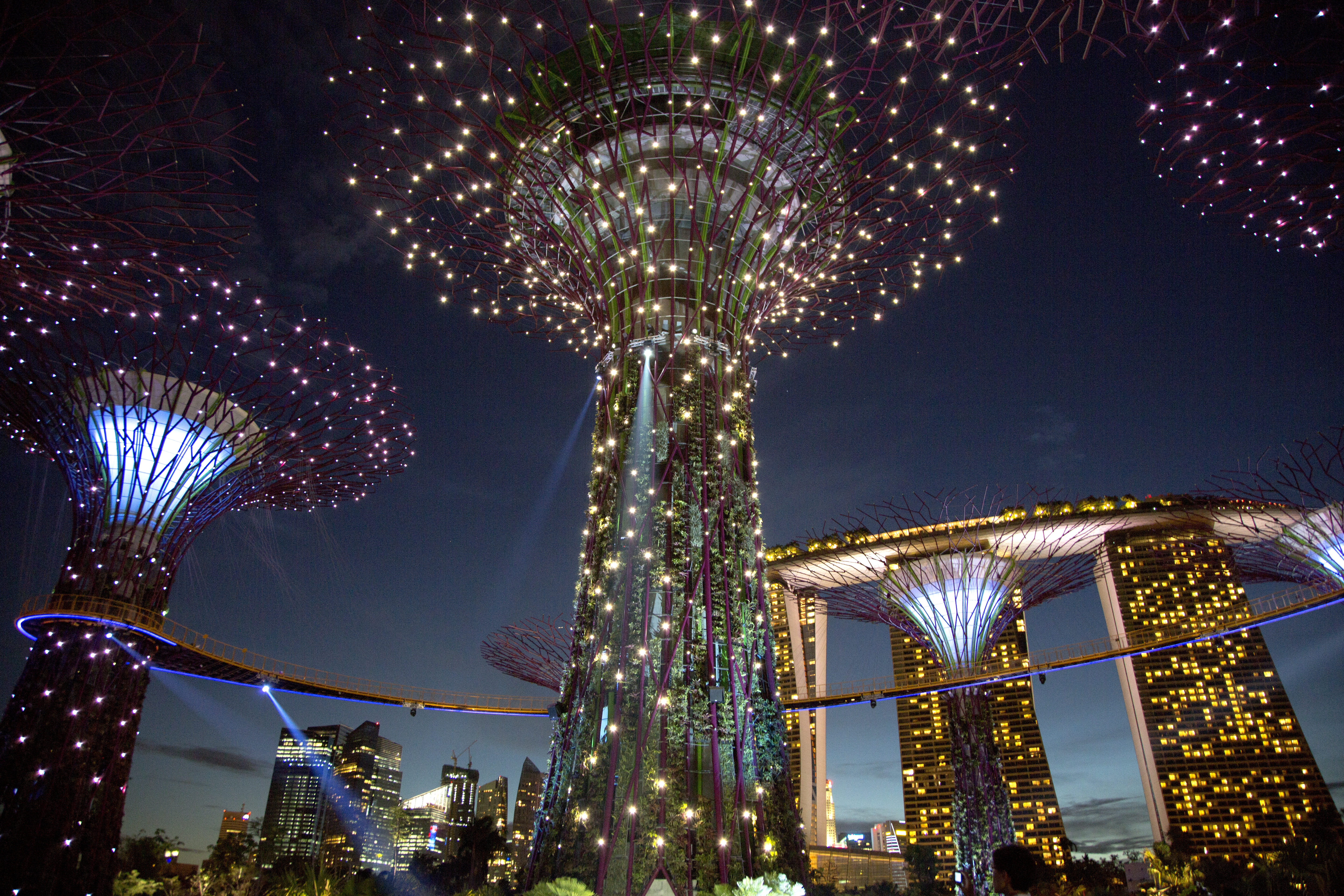 filesupertree grove gardens by the bay singapore 20120708 02 - Garden By The Bay Fireworks