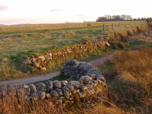 File:The Well of the Dead, Culloden Moor - geograph.org.uk - 494157.jpg
