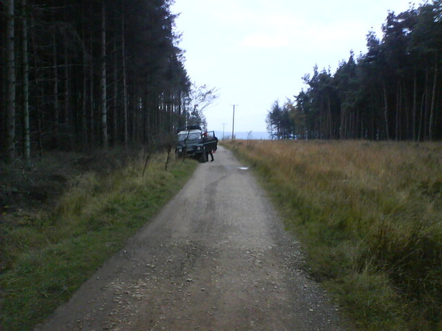 Track Through Stainburn Forest - geograph.org.uk - 600712