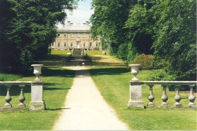 Tree-lined approach to Haddo House - geograph.org.uk - 951296