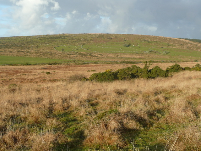 View across Witheybrook - geograph.org.uk - 1083607.jpg