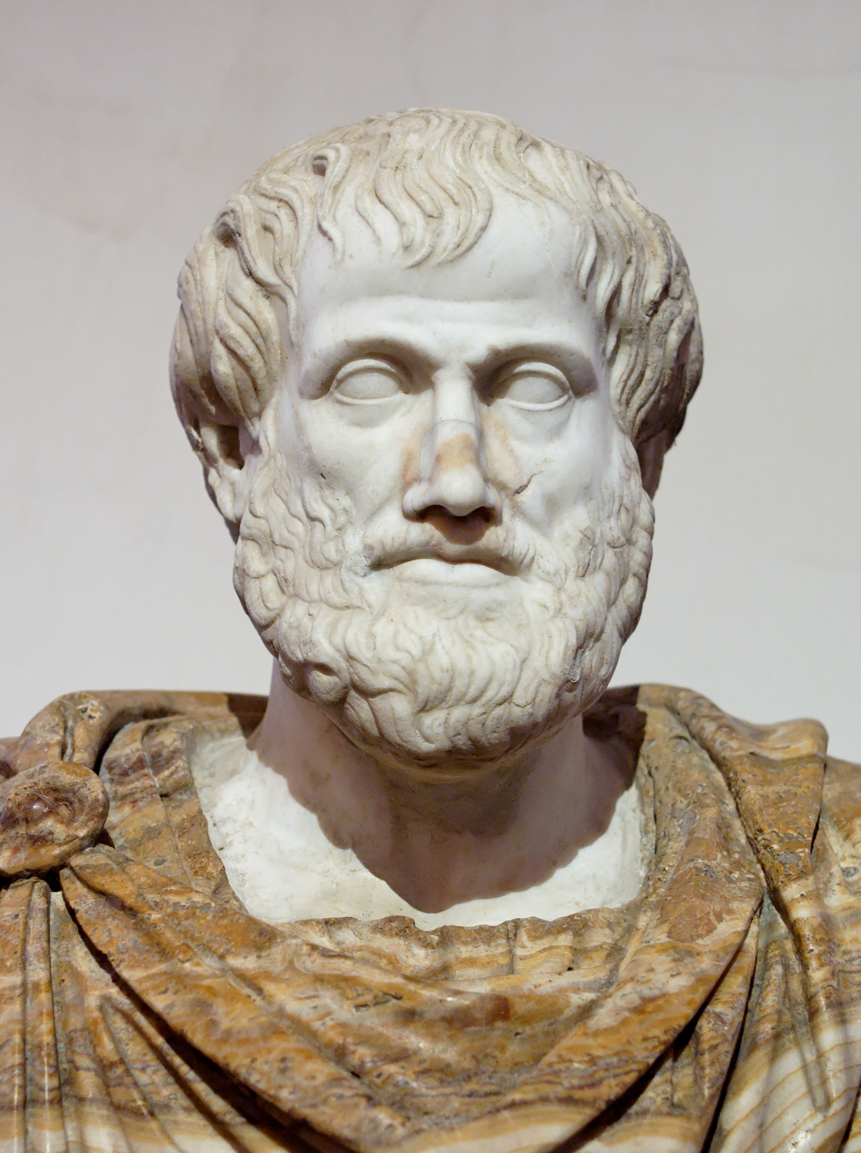 Roman copy in marble of a Greek bronze<br />bust of Aristotle by [[Lysippos]], [[Circa|c.]]&nbsp&#x3B;330&nbsp&#x3B;BC.<br />The [[alabaster]] [[mantle (clothing)|mantle]] is modern.