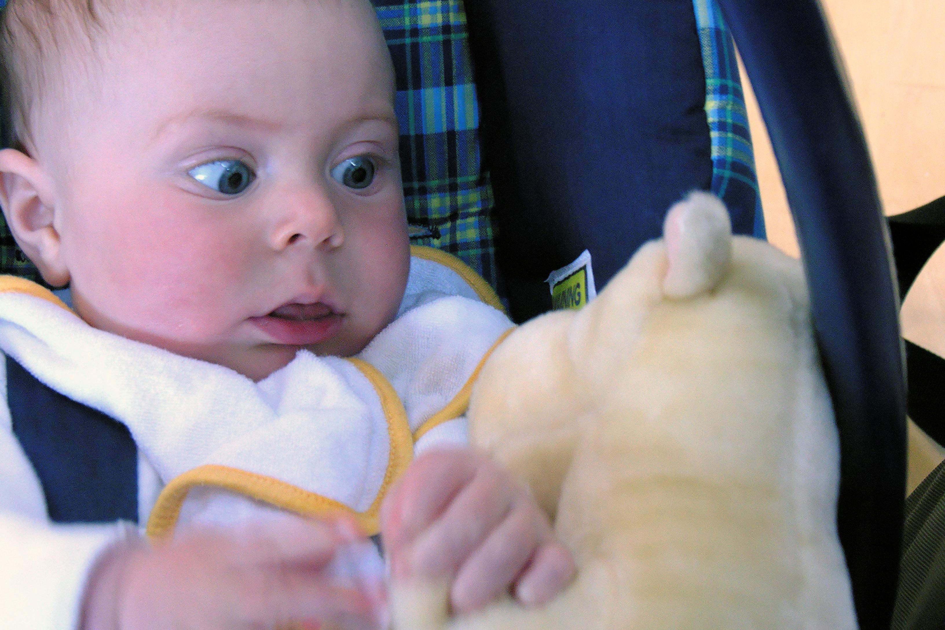 Un bébé ayant peur, les yeux ecarquillés