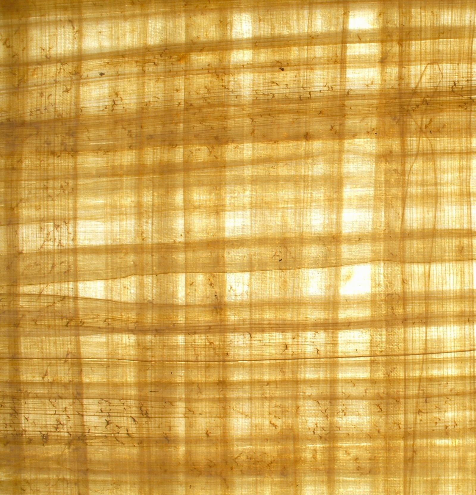 Papyrus Paper Maya∴Cosmos ☽ k↯...