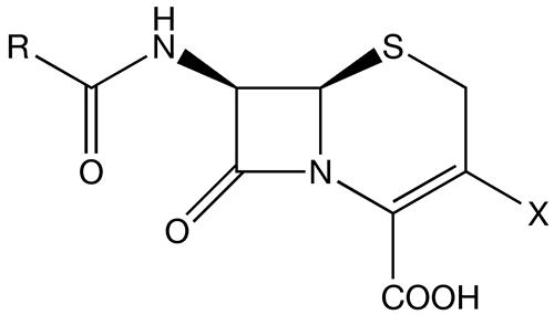 Cephalosporin Market