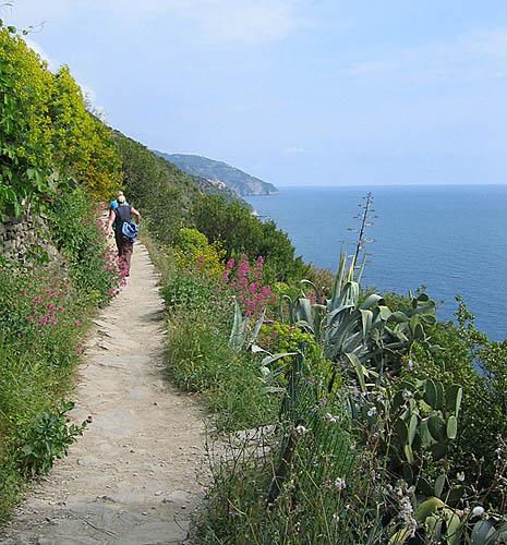Cinque Terre hiking - drumetie