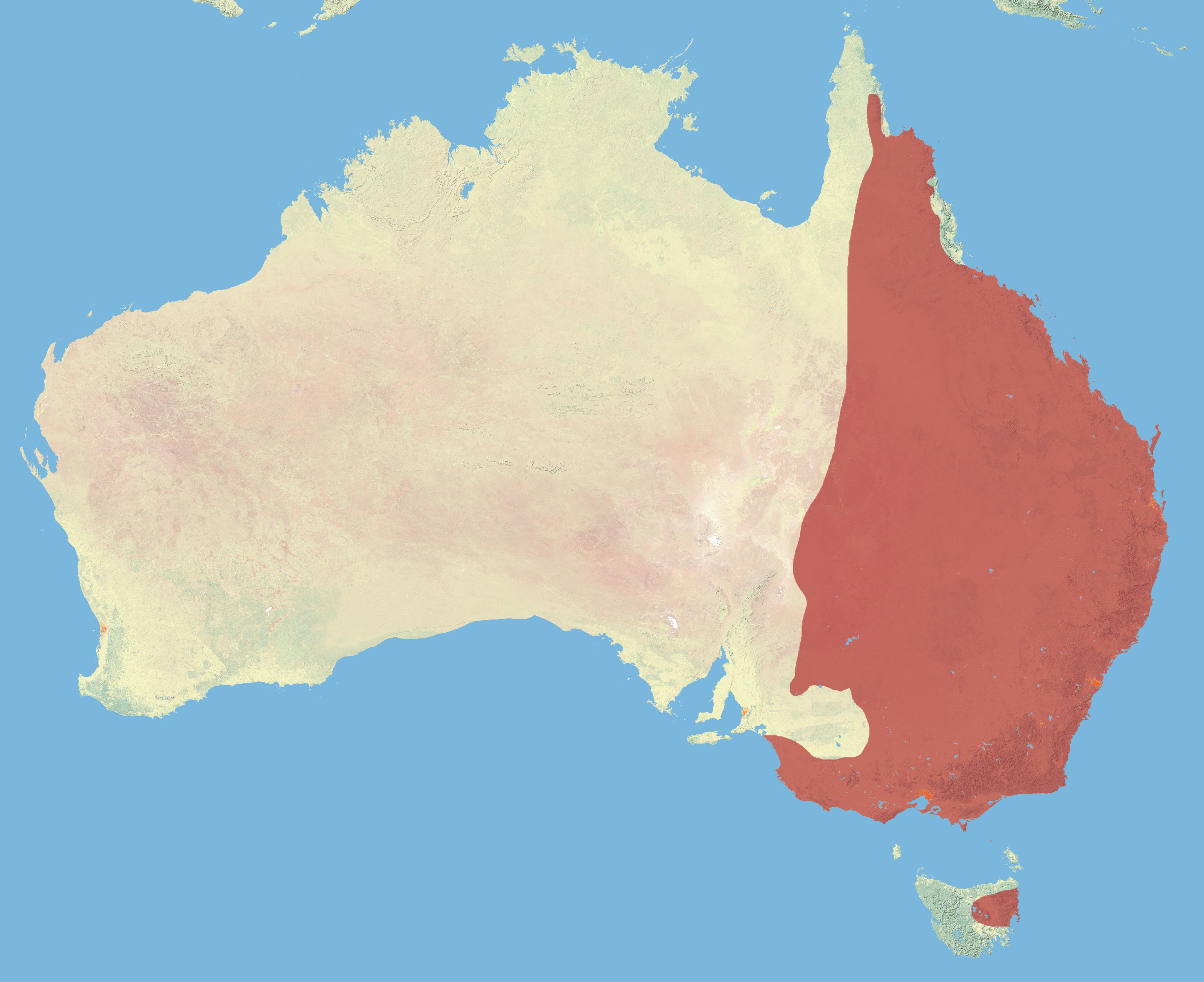 Kangaroo Distribution In Australia Vs Elevation OC Dataisbeautiful - Australia map kangaroo
