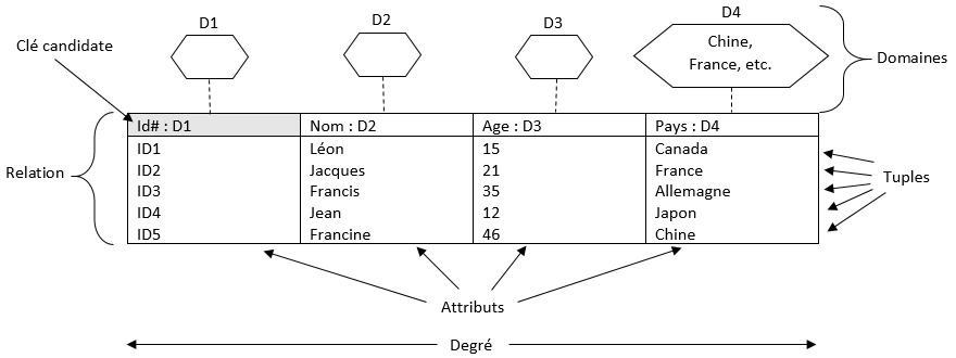 Figure structure relationnelle.