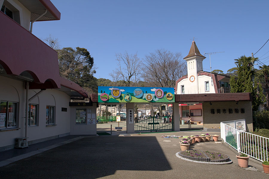 Fukuoka zoo your complete guide compathy magazine Garden city zoo