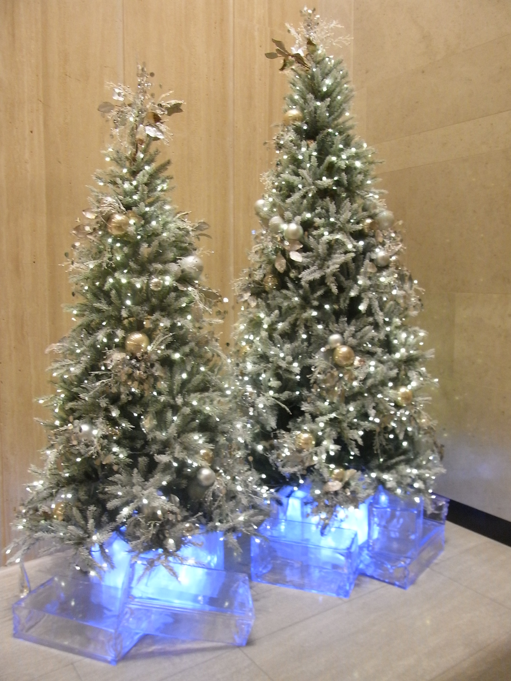 File:HK Central Alexrandra House evening two Christmas trees Dec ...