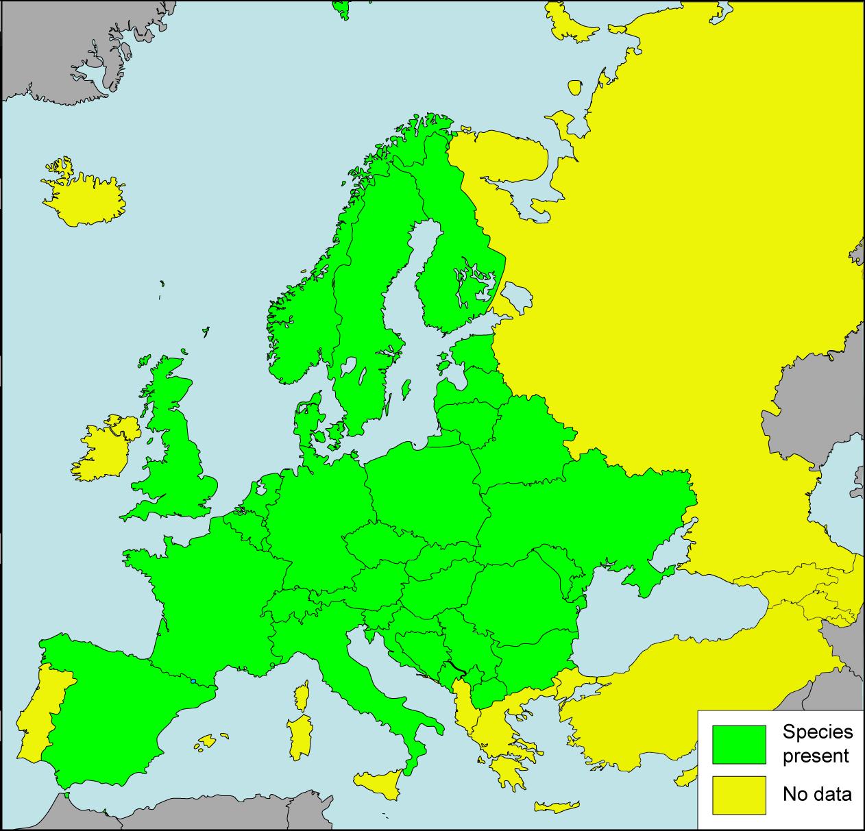 Description helix pomatia presence in european countries