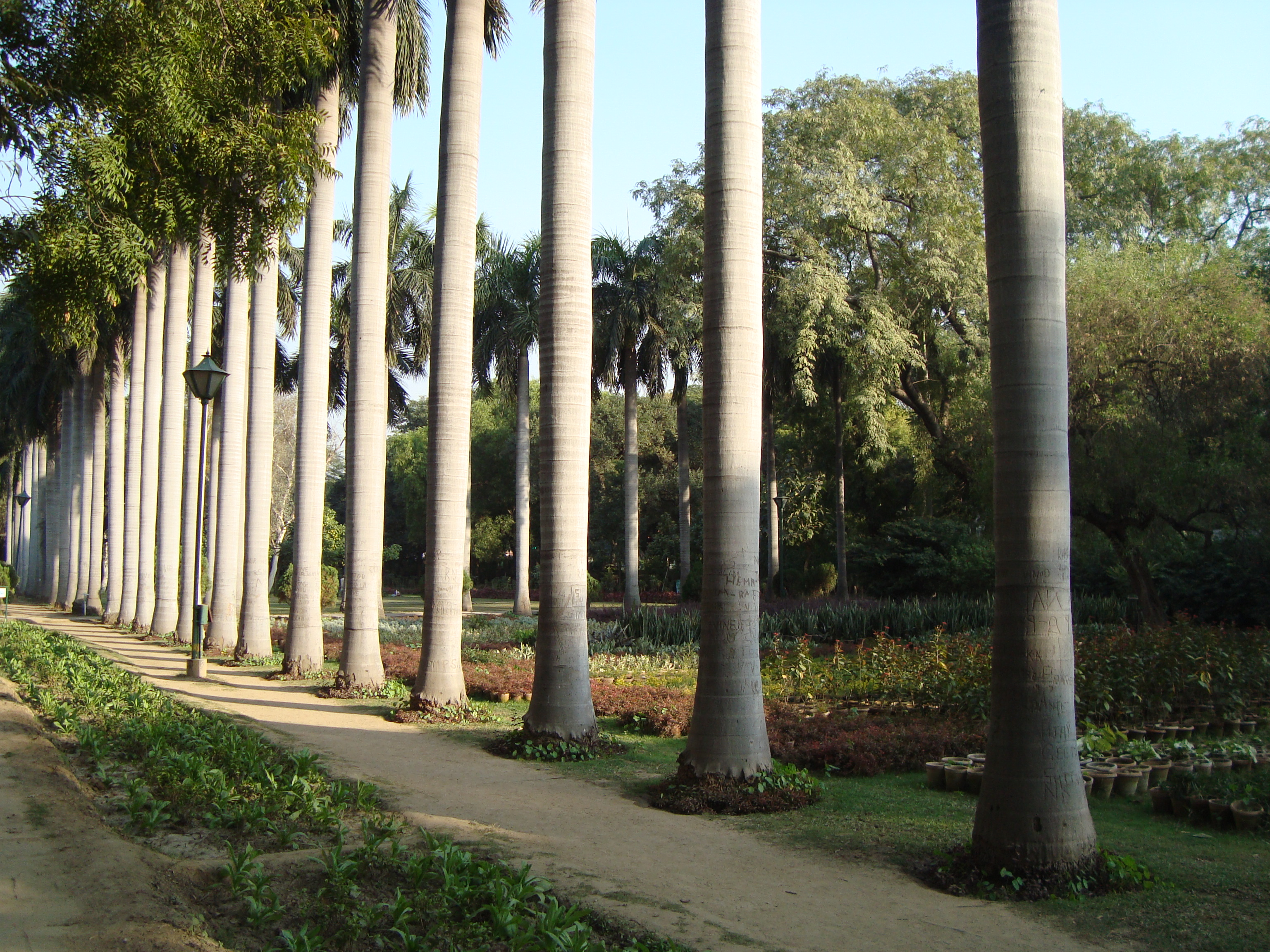 File Lodhi Garden Lanscape Wikimedia Commons