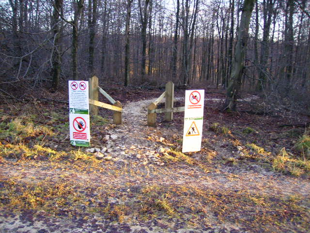 Mountain bike trail in Dalby Forest - geograph.org.uk - 290450