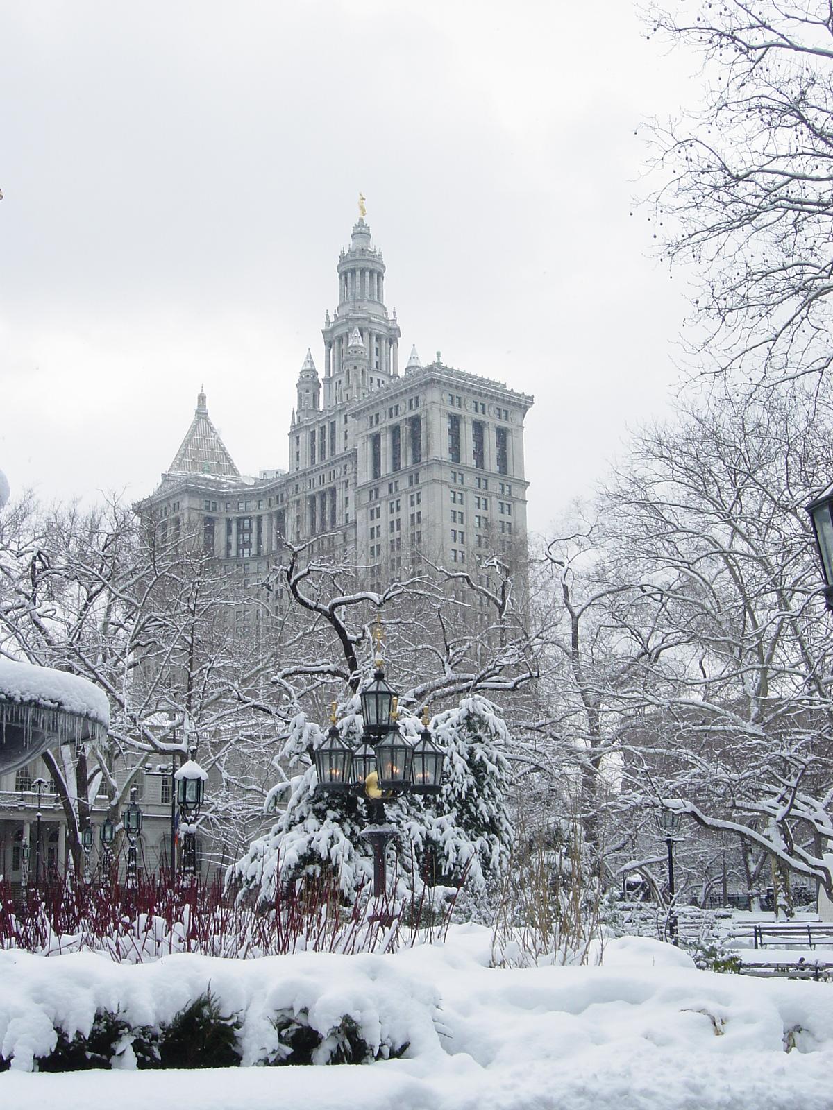 Description new york city hall park winter