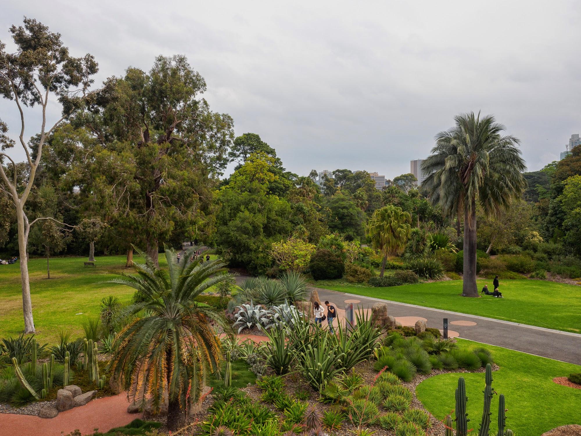 австралийский национальный ботанический сад фото каждый день бесплатно