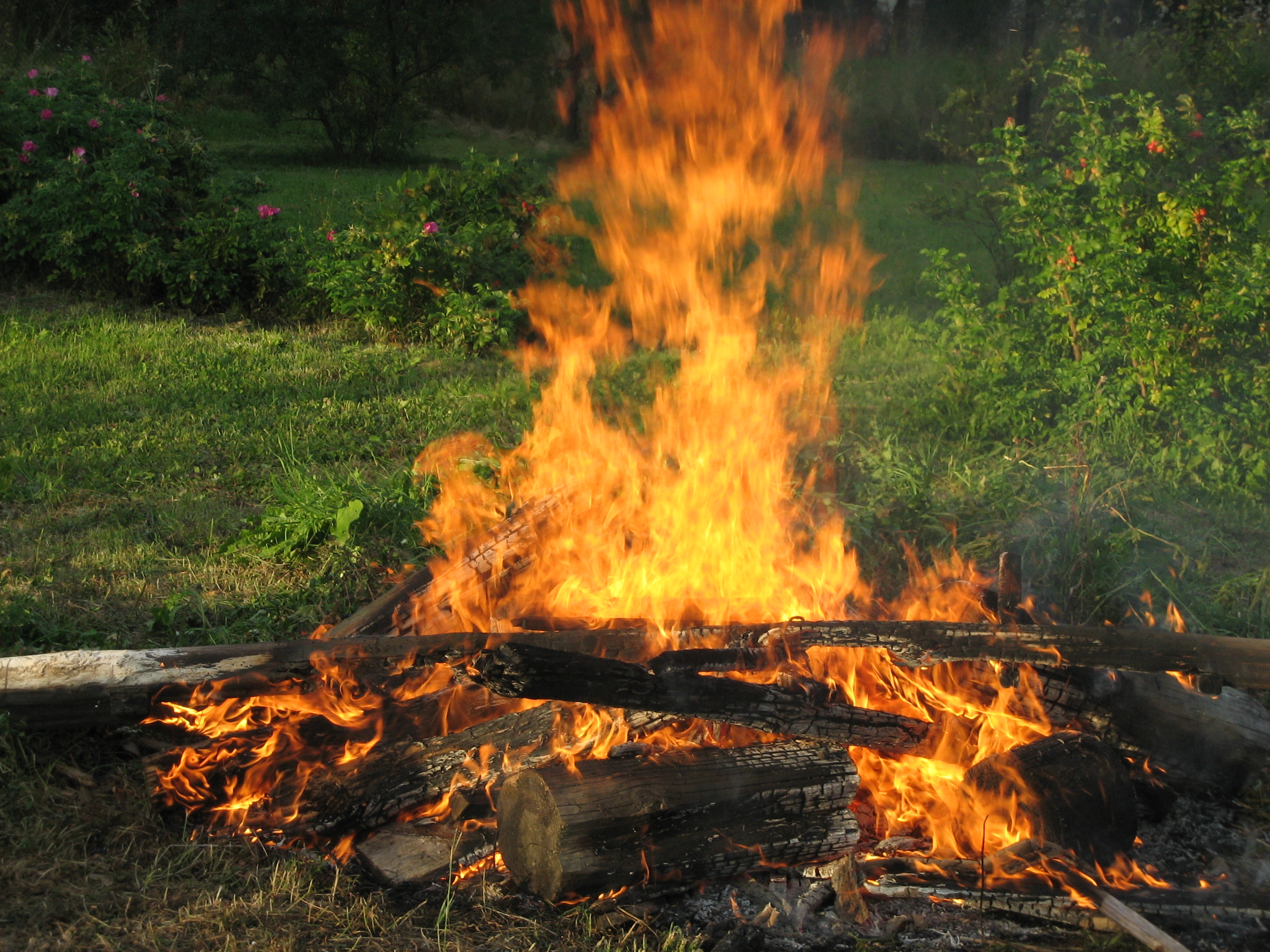 Wel e To The Jungle furthermore C fires Still Banned In Cariboo Fire Centre as well 1 besides How To Build Better Garage Floor likewise Fire Golem. on types of fires to build