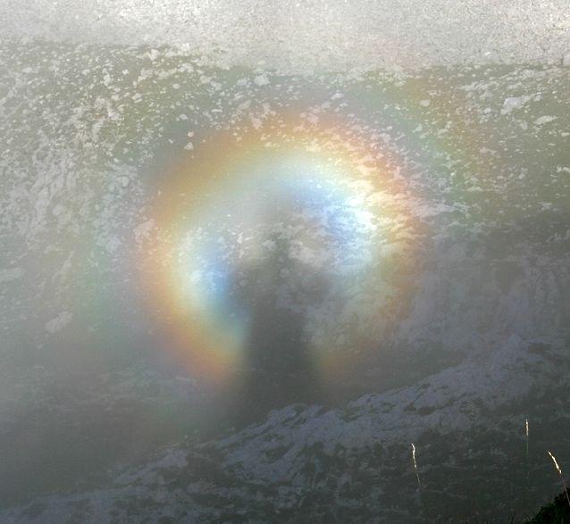Certaines photographies dites miraculeuses... Spectre_Brocken