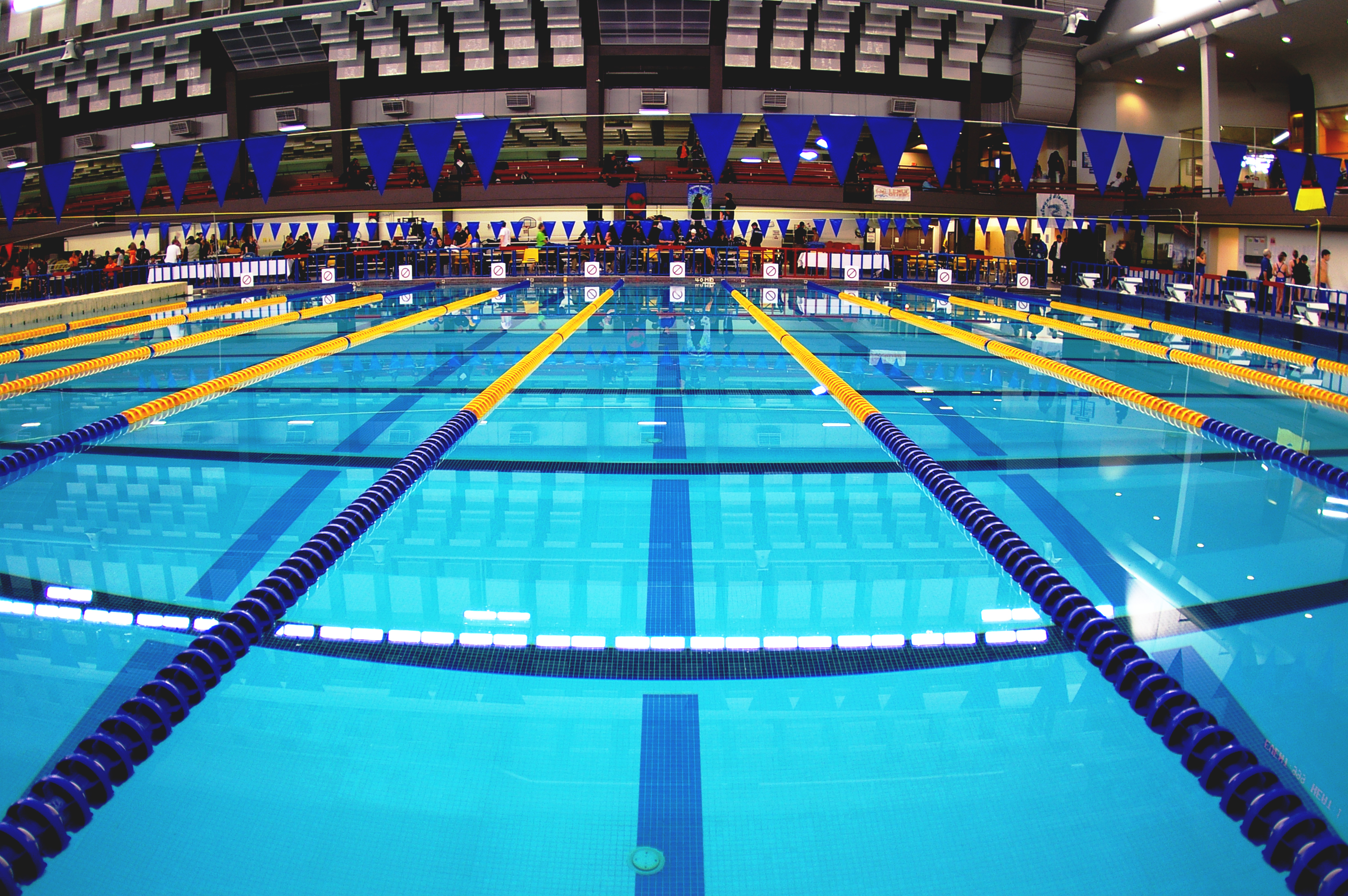 File:Swimming pool with lane ropes in place.jpg - Wikimedia ...