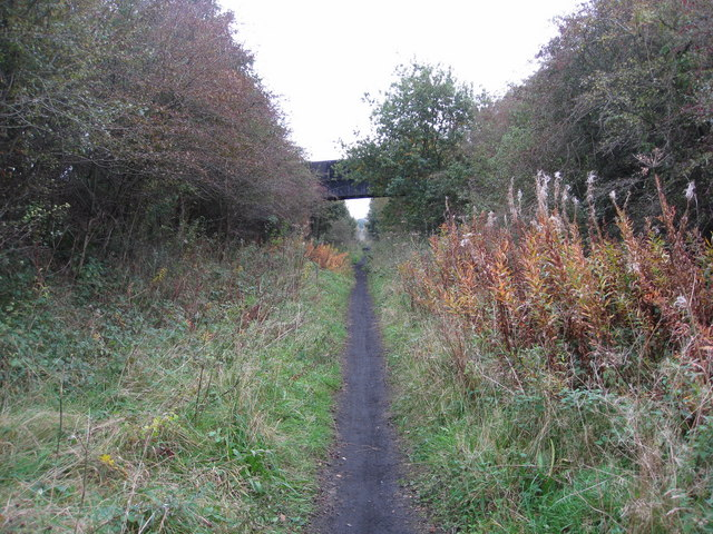 Teversal Trail between Skegby and Pleasley - geograph.org.uk - 1001434