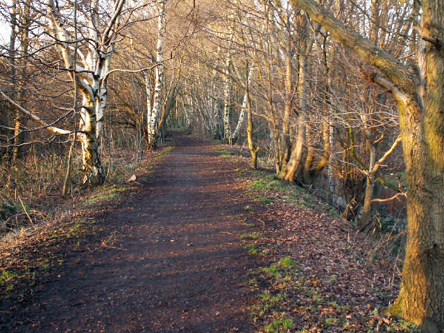 The Harborne Walkway - geograph.org.uk - 110946