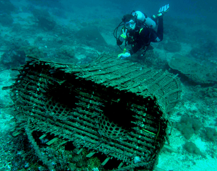 File traditional fish wikimedia commons for Homemade fish traps