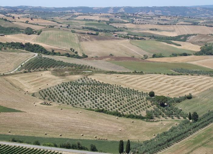 Paesaggio della Valle dell'Ombrone presso Cinigiano