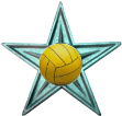 Water Polo Barnstar.png