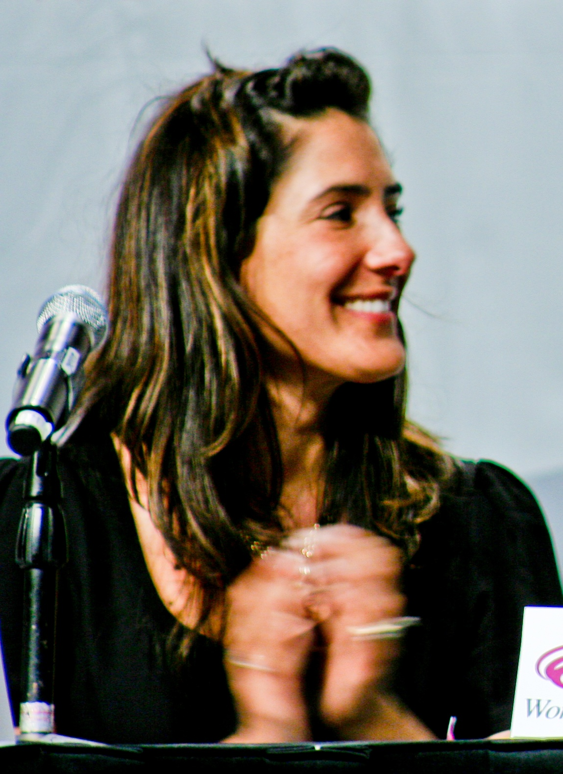 alicia coppola csi