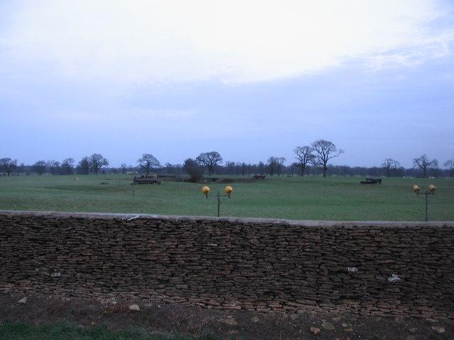 Badminton Deer Park - geograph.org.uk - 314663