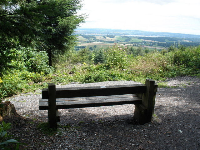 Bench with a view, Haldon Forest Park - geograph.org.uk - 1429578