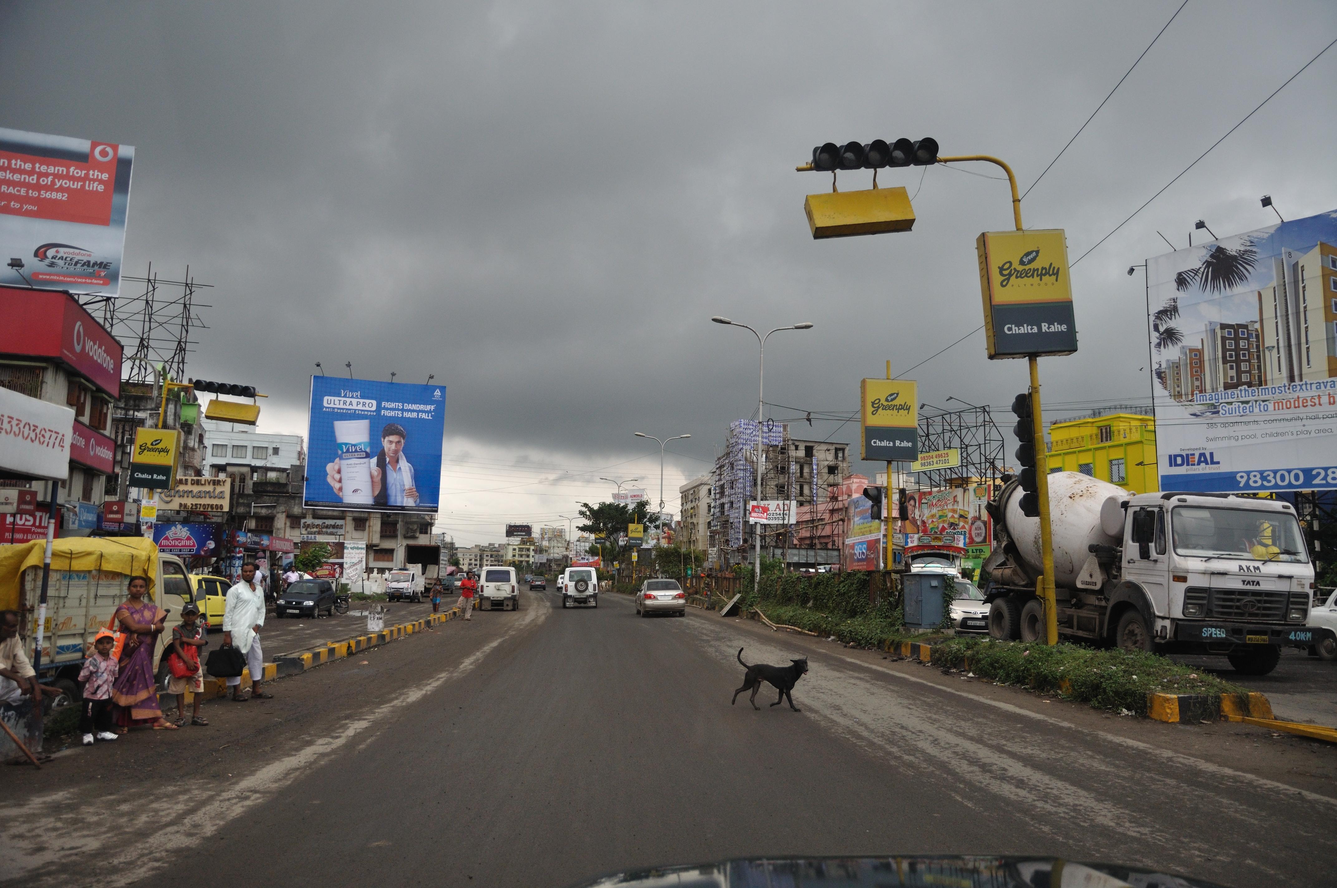 Chinar Park - Major Arterial Road - Kolkata 2011-09-09 4933.JPG