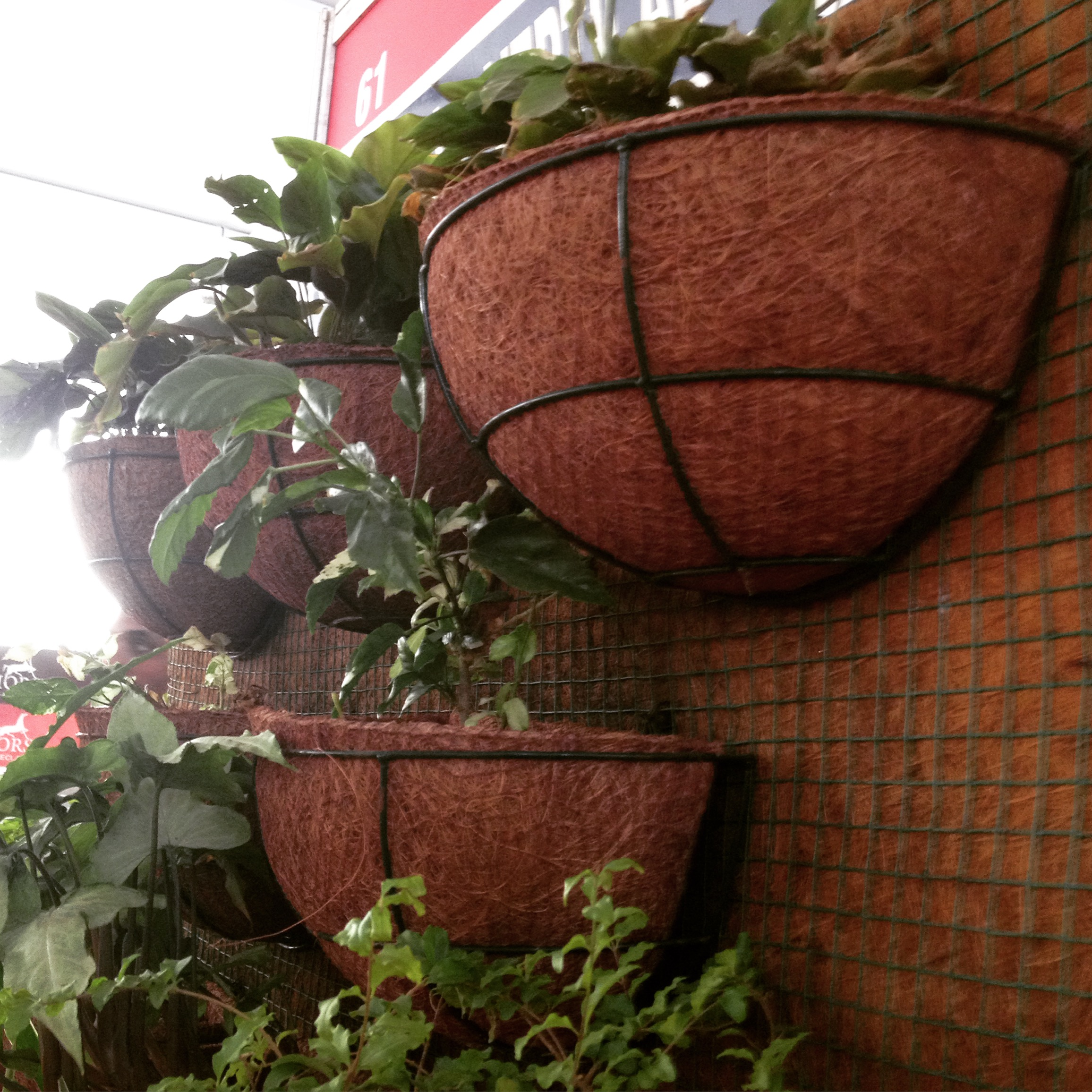 Filecoir flower vases and pots on display during coir kerala 2015 filecoir flower vases and pots on display during coir kerala 2015 alappuzha reviewsmspy